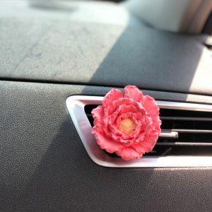 Usage: Car Aroma Stone